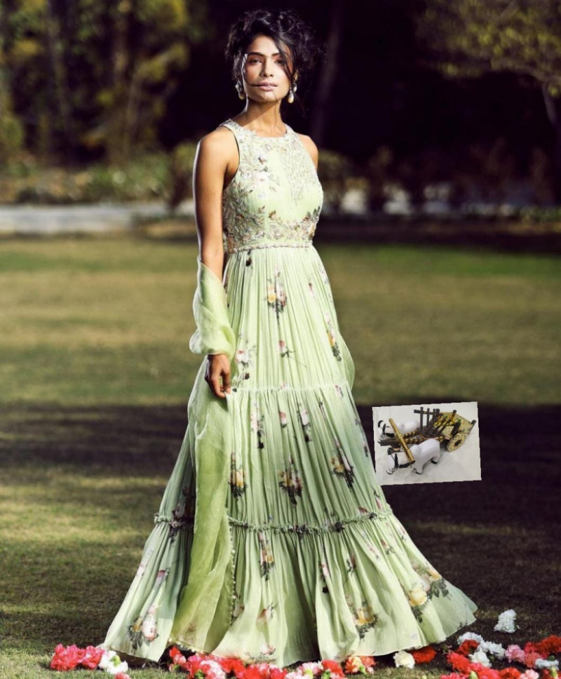 Designer Pista Color Long Gown