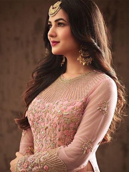 Sonal Chauhan Pink Heavy Embroidered Bollywood Anarkali Gown